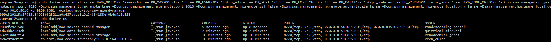 How to connect Java profiler to the module running on Docker +